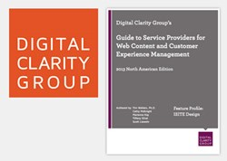 Digital Clarity Group Image