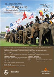 Krabi Riviera at the King's Cup Elephant Polo Tournament
