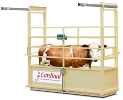 Cardinal's New NTEP Single Animal Livestock Scales Accurate to ½ LB