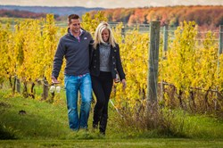 Fall in the Traverse City Wine Country