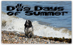 dog days of summer, dog days, Indian summer, dog days of august, when are the dog days of summer