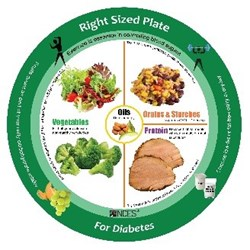 NCES Right Sized Diabetes Portion Plate