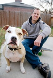 pit bulls breed specific legislation breed discriminatory legislation best friends animal society
