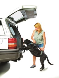 pets, products, harness, dogs, travel, summer, holiday, cars, vehicles