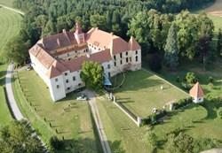 kalsdorf castle, reinisch contemporary, helmut reinisch, contemporary art, art venues austria, new art austria