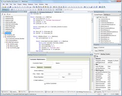 Visual DataFlex 2012/17.1 Studio & Web Framework screenshot.