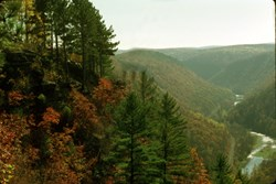 All four seasons are beautiful in the Pine Creek Gorge, but autumn is a favorite amongst travelers and locals.