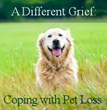 Struggling with Pet Loss? Self Healing Expressions Supports Grieving Pet Owners in Remembering Their Animal Companions for Pet Memorial Day
