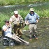 warriors and quiet waters, wounded veterans