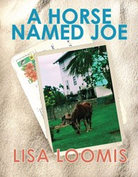 A Horse Named Joe by Lisa Loomis