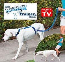 Dog Leash Training | Best Dog Leash Review