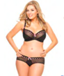 plus size lingerie,big girl panties,chic undies for big girls,plus size bras,plus size baby dolls,plus size corsets