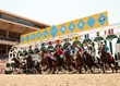 Del Mar Season Races to a Successful Close