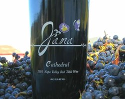 2005 Jana Cathedral  by winemaker Scott Harvey -- among the Cabernet Sauvignon Grapes