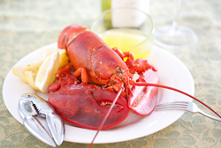 Maine lobster delivery service offers live Maine lobster delivery and seafood delivery