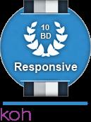Best Responsive Web Design Company: Kohactive