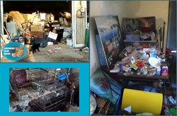 Address Our Mess animal hoarding help