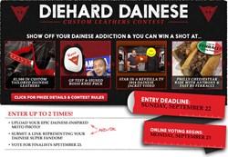 Diehard Dainese Custom Leathers Contest