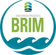 Oneupweb Hosts 3rd BRIM Thought Leadership Conference for Michigan...