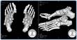 Diversified Radiology of Colorado