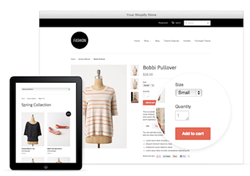 Example of a Shopify Store