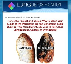 how to clean lungs how the complete lung detoxification guide