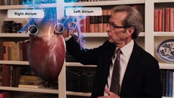 Atlanta Cardiologist (Heart Doctor) Talks Heart Anatomy