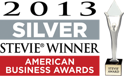 American Business Awards 2013