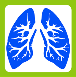 lung image of Breathing Retraining Center LLC logo