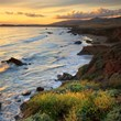 The Season is Changing: Fall in Love With Cambria, CA