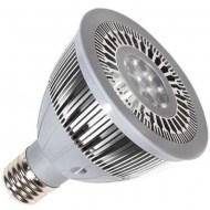 CUL Listed Bulb