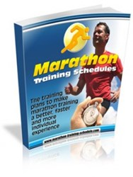 marathon running tips how 100 day marathon plan