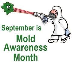 September Mold Awareness month