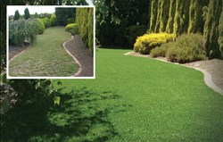 synthetic turf, synthetic grass, synthetic landscape turf, synthetic landscape grass, artificial turf, artificial grass, artificial landscape turf, artificial landscape grass, landscape turf, waterless grass, environmentally friendly turf, water savings,