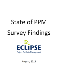 Survey Report of The Current State of Project Portfolio Management