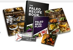 healthy paleo recipes how the paleo recipe book