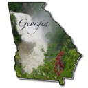 Georga down payment assistance specialists