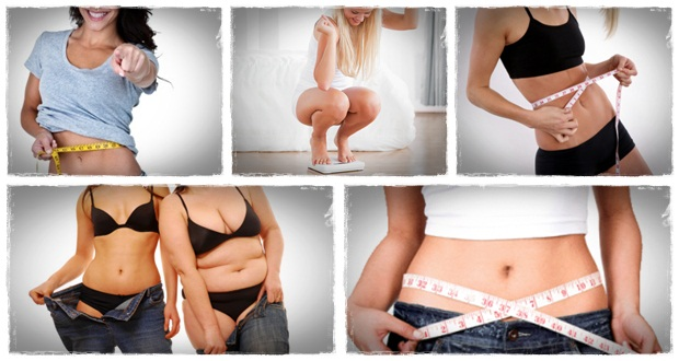 how to become a weight loss consultant