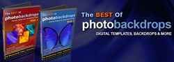 professional photo backgrounds how the best of photobackdrops
