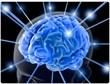 Enhancing Brain Function, New Life Brain Center Celebrates Five Years...