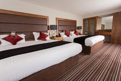 Contemporary Executive Twin Room at Sketchley Grange Hotel & Spa