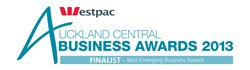 Pure SEO Nominated as Finalist In 2013 Auckland Business Awards