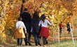 10 Ways to Make Leaf-Peeping Fun For Kids this Fall