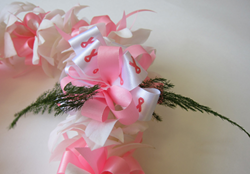 Breast Cancer Research Lei