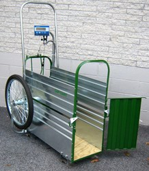 Caf-Cart with Weighing Scale