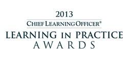 Learning in Practice Award 2013