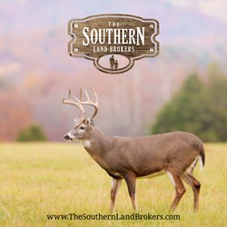 The Southern Land Brokers - Alabama Land for Sale