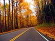 Smoky Mountain Roadtrip