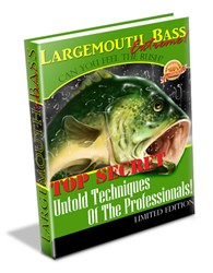 largemouth bass fishing tips how largemouth bass extreme