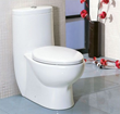 tall dual flush one piece eco-friendly ceramic toilet Eago TB309